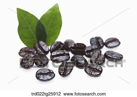 clip art of roasted coffee beans trd022tg25912 search