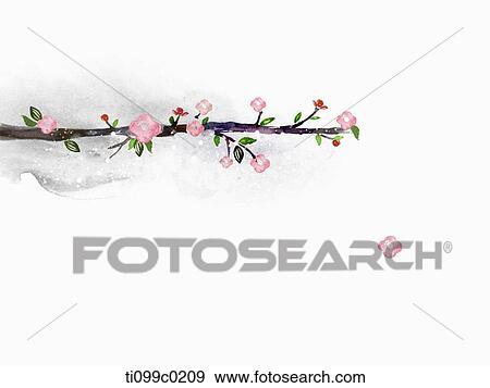 Stock illustratie roze kers bloesem boom fotosearch zoek vector