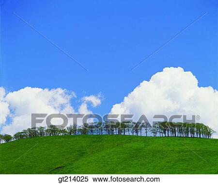 Banque d 39 image nature paysage paysage sc ne for Exterieur jour