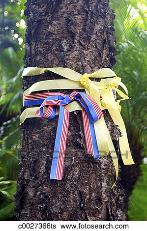 Stock images of yellow ribbons and red and blue ribbons for Red ribbon around tree