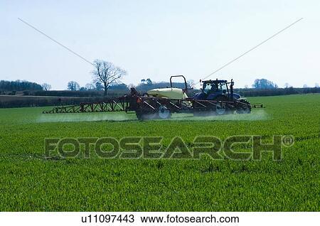 Colección de foto - tractor, tirar, mecánica, en, cosecha, campo. Fotosearch - Buscar fotos e imágenes y fotos de Clip Art