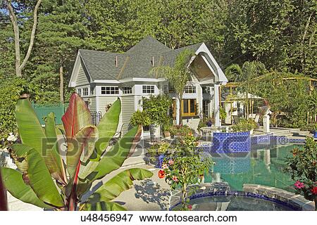 Immagine stagno casa e piante con piscina u48456947 for Piante da stagno