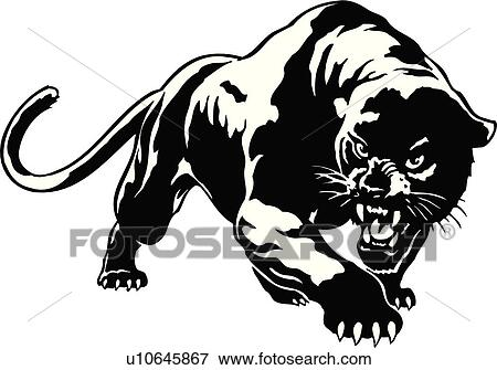 clip art of illustration lineart animal panther cougar puma rh fotosearch com super puma clipart puma clipart black and white