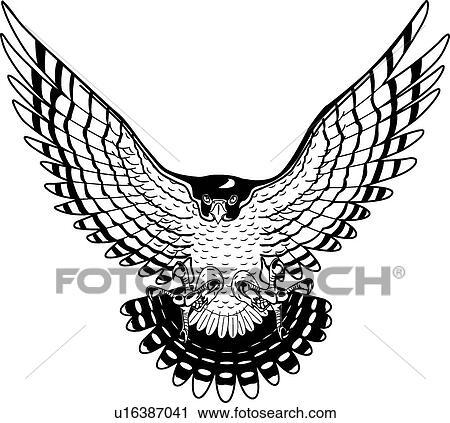 clipart of falcon u16387041 search clip art illustration murals rh fotosearch com falcon clip art pictures falcons clip art free