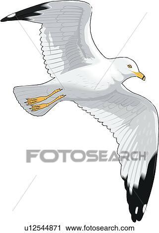Clipart of Seagull u12544871 - Search Clip Art, Illustration ...