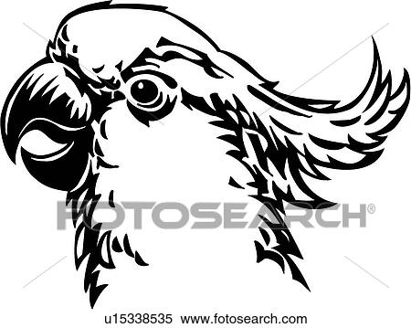 Cockatoo Line Drawing Clipart Cockatoo