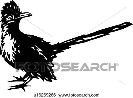 Roadrunner Clipart and Illustration. 14 roadrunner clip art vector ...