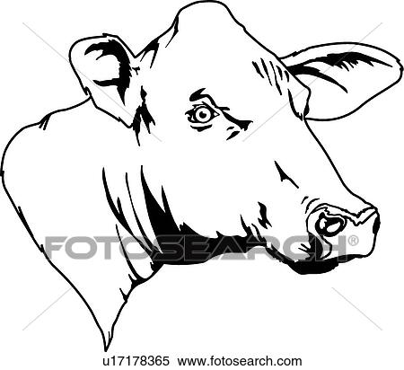 Angry Bull Vector Illustration 15323806 further Cow Skull Svg Cut File Bull Floral in addition Texas Longhorn Bull Skull Vector 4779206 also Zombie head clipart in addition Cow skull cricut. on steer head clip art