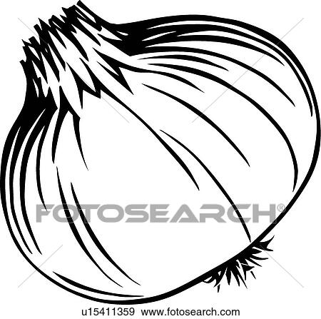 Onion Clipart Black And White | www.pixshark.com - Images ...