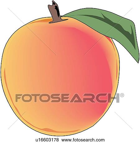 Peaches Clip Art and Illustration. 6,654 peaches clipart vector ...