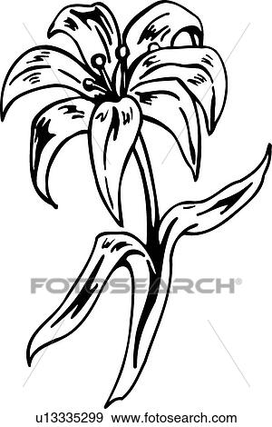 Clip Art of Easter Lily u13335299 - Search Clipart, Illustration ...
