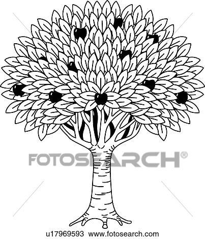 Clipart arbre fruitier u17969593 recherchez des clip - Dessin figuier ...