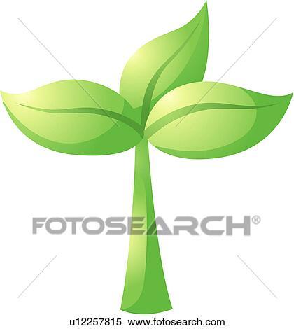 植物生长过程 图标