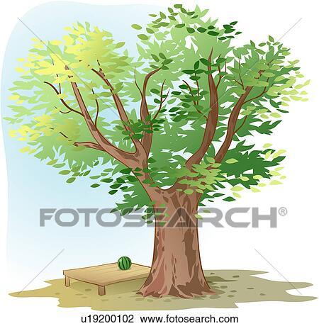 Clipart of shade, tree, watermelon, flat bench, zelkova ...
