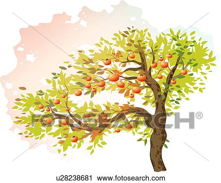 Clipart of plants, tree, fig, fruit, fig tree, trees, plant ...
