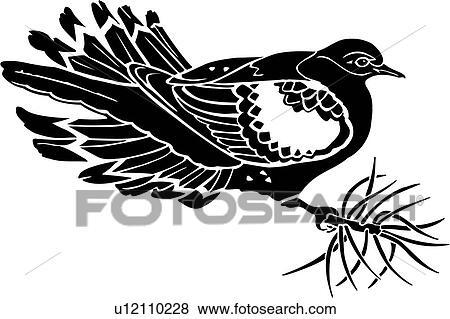 Clip Art of , animal, bird, dove, morning, species ...