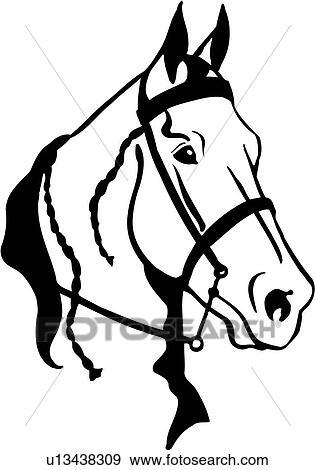 clip art of horse animal breeds horse head tack u13438309 rh fotosearch com clipart horse head clipart horse head