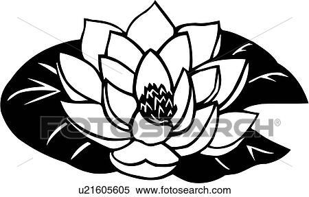Clipart of , buddhism, flower, lotus, varieties, u21605605 ...