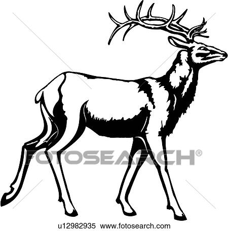 U12982935 moreover Reindeer1 further Royalty Free Stock Images Hand Drawn Gray Letters Numbers Image28044949 as well 120817476786 moreover Texas Parks And Wildlife 13 Inch Rule. on deer antlers