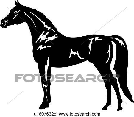 Clipart of , animal, arabian, breed, dressage, horse, standing ...