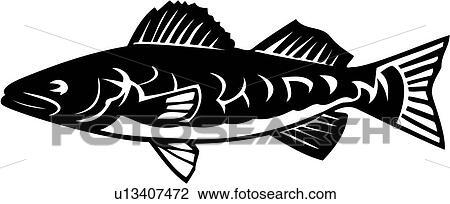 Clipart of , animal, fish, species, walleye, u13407472 - Search ...