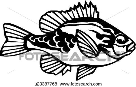 Pumpkin Seed Drawing Fish Ocean Pumpkin Seed