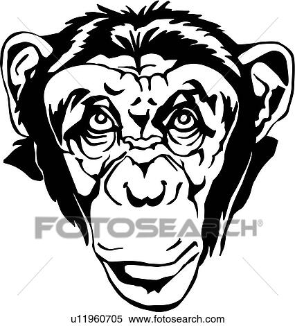 clipart of animal monkey chimp chimpanzee u11960705 search rh fotosearch com Baboon Clip Art Hippo Clip Art
