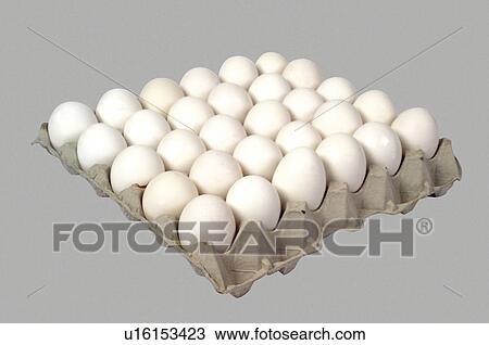 Colecci n de foto supermercado alimento bandeja huevo for Bandejas para huevos