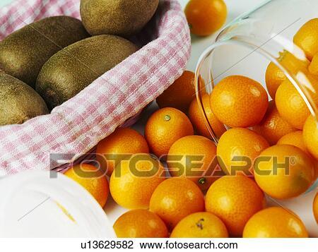 Archivio fotografico pianta ovale kumquat kiwi vaso for Pianta kiwi prezzo