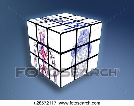 ligado cubo