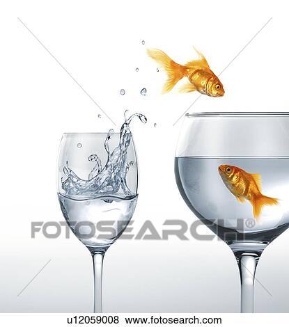 Banque d 39 illustrations sauter poisson rouge typon for Recherche poisson rouge
