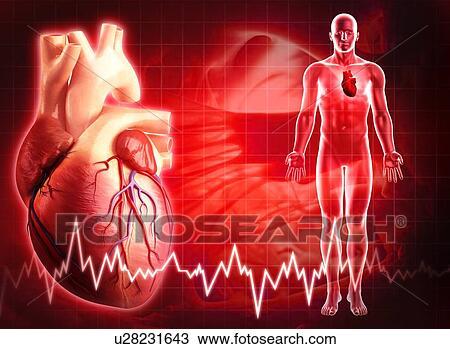 Dessin coeur humain typon u28231643 recherchez des - Dessin coeur humain ...