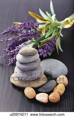 Clipart of Lavender aromatherapy u20974211 - Search Clip Art ...