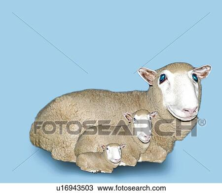 Sheep Eyes Drawing Drawing Sheep Family With