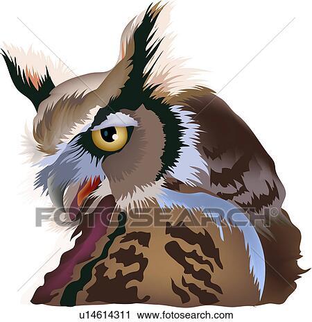 Clipart of hoot owl, animal, birds, bird, vertebrate, owl ...