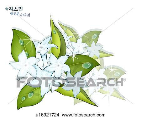 Flowering Plant Drawing Drawing Flowers Nature