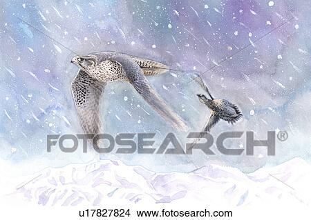 Watercolor Bird Flying Bird Flying in The Snow