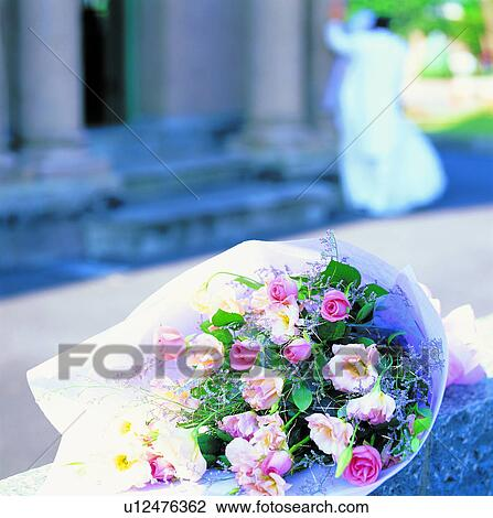 Blume romantische liebe natur blume blumen pflanze großes bild
