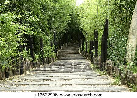 coleccin de imgen greenshade groenlandia el jardn el pavimento el parque rboles