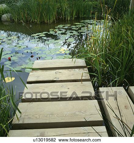 Stock photo of wooden jetty to large garden pond u13019582 for Pond fish stocking calculator
