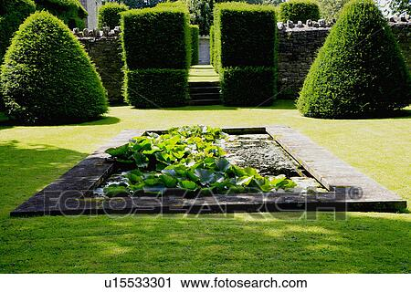 Stock Photography Of Rectangular Pond And Topiary In