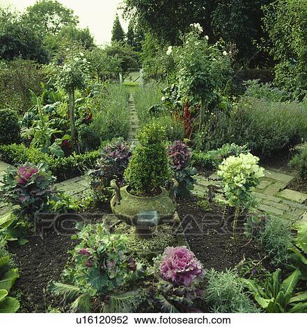 Archivio fotografico piccolo arbusti in otri in - Giardino piccolo foto ...