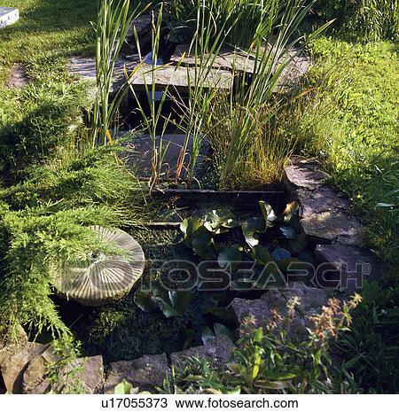 Archivio fotografico millstone e piccolo stagno in for Stagno in giardino