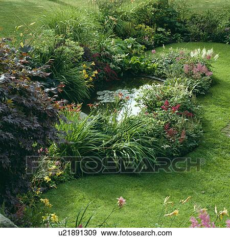 Stock Photograph of Flowering plants around pond in
