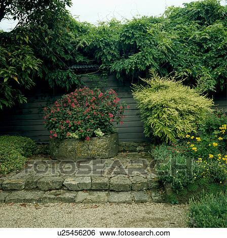 Stock afbeeldingen steen stappen in land tuin in zomer u25456206 zoek stockfotografie - Zomer keuken steen ...