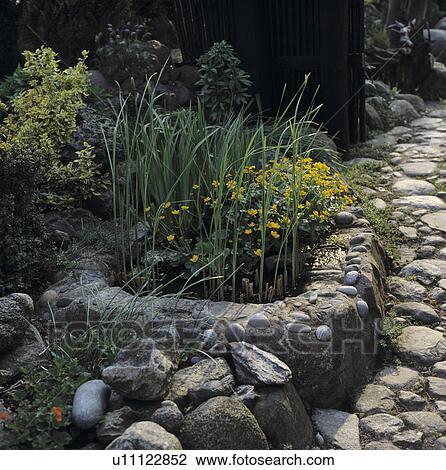 Archivio fotografico piccolo elevato stagno in for Stagno in giardino