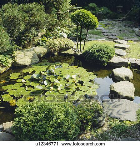 Stock photography of large stones edging circular pond in for Circular garden ponds