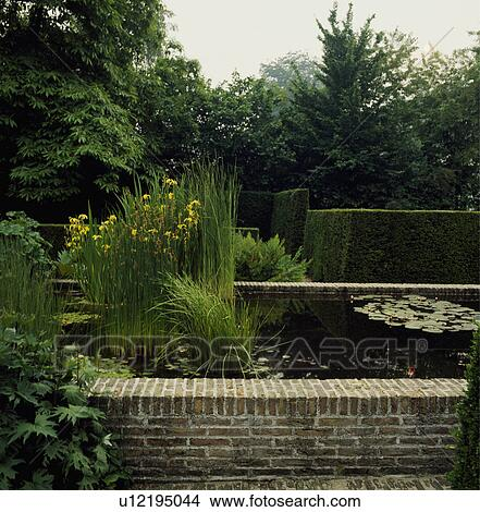 Stock Photo Of Raised Pond And Green Plants In Summer