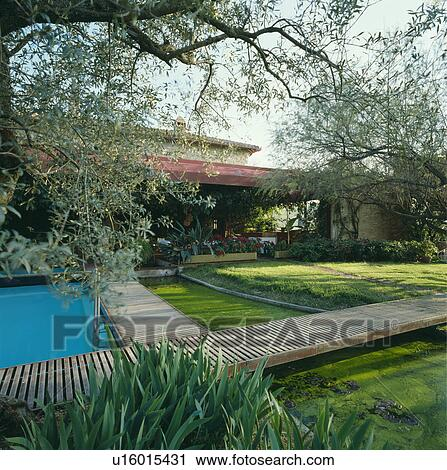 Rectangular Pond And Decking In Italian Country Garden In Summer