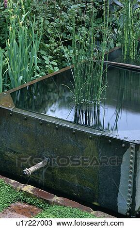 Stock Photo Of Small Water Feature In Old Tank In Country